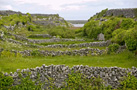Loop Head Cliffs