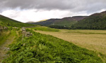 Djouce Mountain on the back