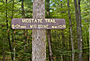 Massachusetts Midstate Trail - by Carl